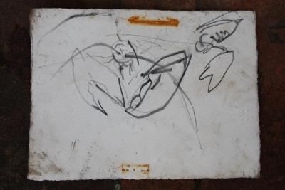 crustaceans-001-copy