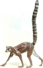 rt-lemur-lr