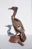 pallass-cormorantlr