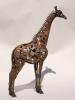 giraffe-lr