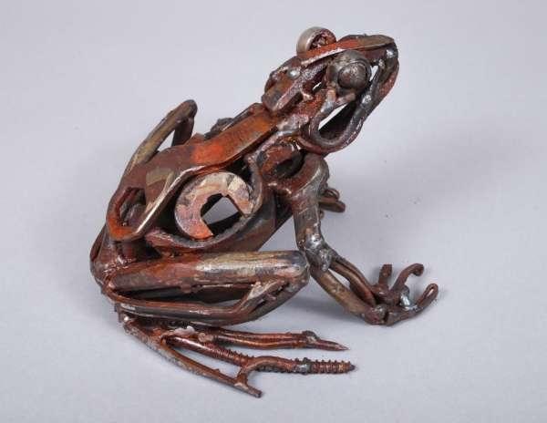 tweezer-nosed-frog-2lr