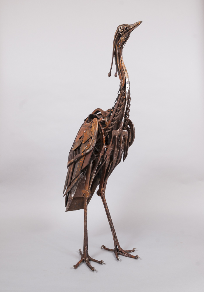 Fork Fronted Heron-4