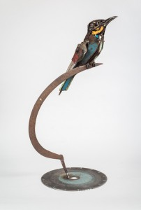 Scissor Bee-eater
